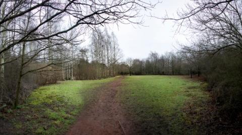 Untitled_Panorama1iguho copy