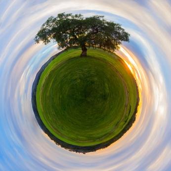 hanging tree planet 5