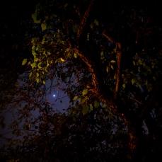 Night Photos 5